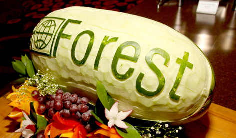 Forest Watermelon